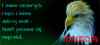 post-18563-0-77564000-1451076897_thumb.png