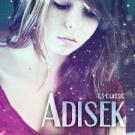 Adisek1337
