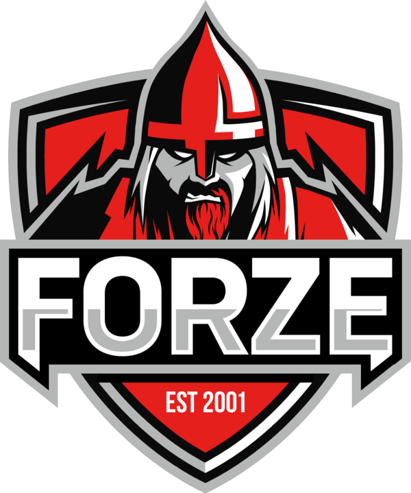 600px-ForZe_2019.png.15bd89189d60f3aa488f176fe77232d4.png