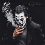 Mr.Fleck