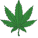 weed.png.bb9ff9ae4f9653e6afe69fe618c44ed1.png